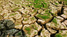 Dry Soil Rise Of Grow Weed