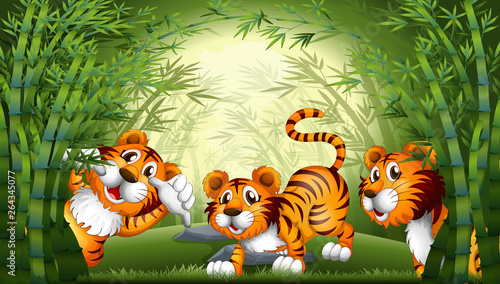 In de dag Vlinders Tiger in bamboo forest