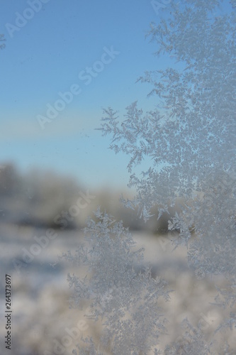 A close-up of beautiful ice flowers on a window, blue sky in the background