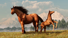 In A Grassy Field During The Springtime, A Foal Plays In With A Bumble Bee As It's Mother Watches. 3D Rendering