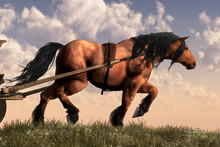Work Horse - A Muscular Horse With A Chestnut Coat And Dark Mane And Tail Pulls A Heavy Wagon Atop A Grassy Hill.