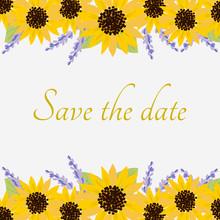 Sunflowers Illustration For Invitation Card.