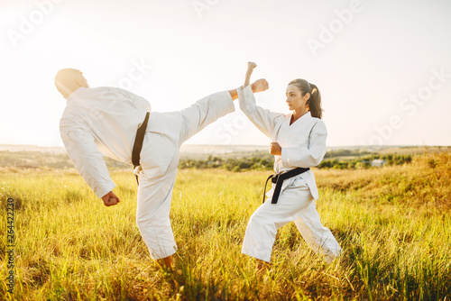 Male and female karate masters fight in field Canvas Print