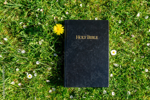 Bible on grass