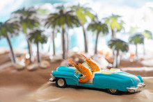 Pair Of Shrimp Travels On A Retro Convertible Along Palm Trees