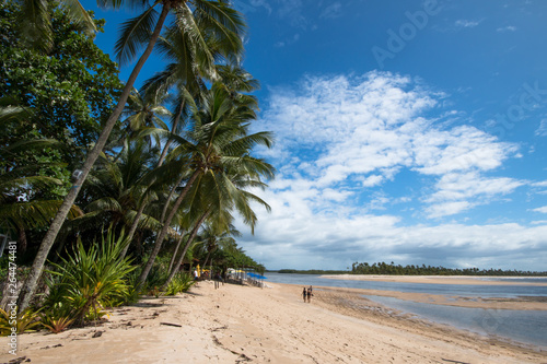 Foto op Canvas Tropical strand Tropical beach with coconut trees