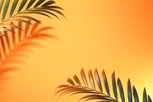 Tropical Plant Shadow On Light Orange Background With Empty Space. 3D Rendering.