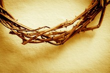 Part Of Crown Of Thorns On Bac...