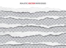 Realistic Torn Paper Edges Vector
