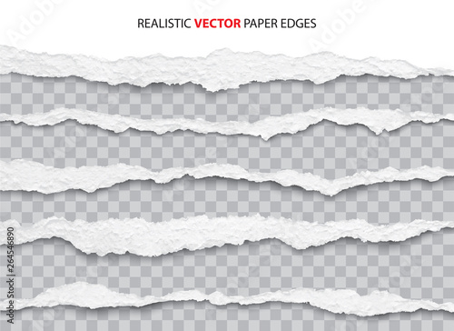 realistic torn paper edges vector Canvas-taulu