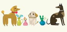 Three Dog Friends With Flowerpots