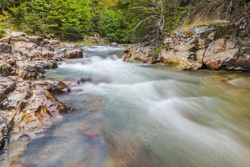 River near in Tierra del Fuego national park