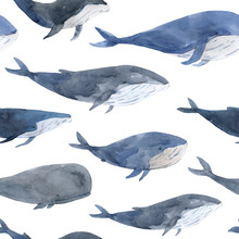 Seamless Pattern Of Watercolor Hand Drawn Calm Whales In Gray And Blue Tones