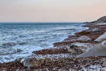 The Beach At Alum Bay On The Isle Of Wight, In The Early Morning