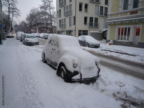 Winter-Ente Fotobehang