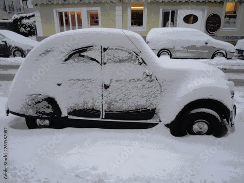 Photo  Winter-Ente