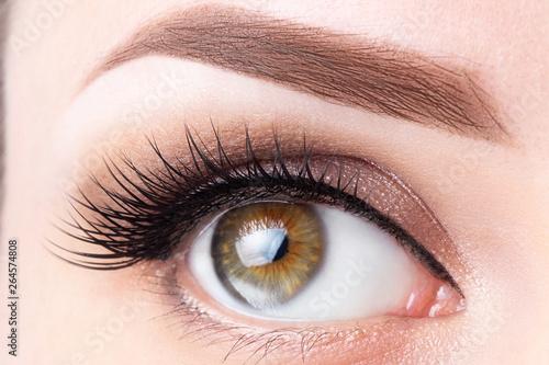 Obraz na płótnie Eye with long eyelashes and light brown eyebrow close-up