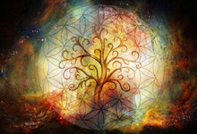 Tree Of Life Symbol And Flower...