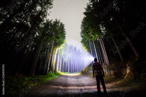 Back view of man with head flashlight standing on forest ground road among tall brightly illuminated spruce trees under beautiful dark blue sky Tablou Canvas