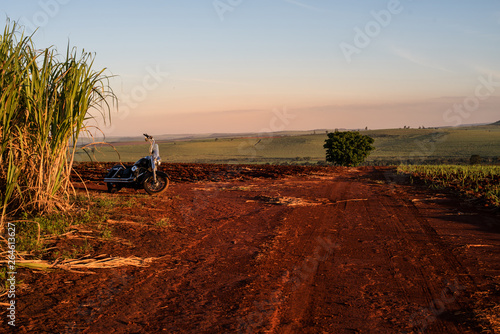 Garden Poster Brown Sugarcane farm dirt road landscape with a customized motorcycle parked.