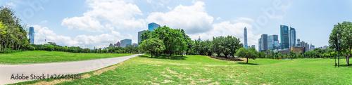 Shenzhen Lianhuashan Park Panorama - 264614811