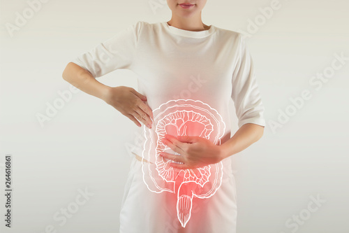 Fotografia  Digital composite of highlighted redinjured or infected intestine of woman