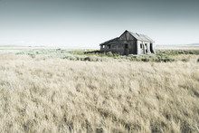 Abandoned Wooden Barn In A Field