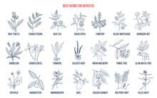 Best Herbal Remedies For Hepat...