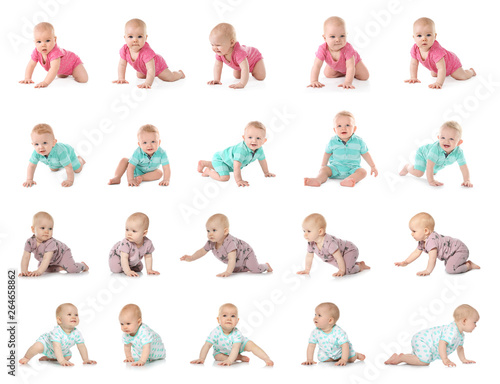 Obraz Set of cute little babies crawling on white background - fototapety do salonu