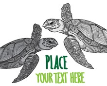 The Sea Turtle Swims. Meditative Coloring Of Antistress. Arrows, Strips, Scales, Lines. Logo, Print On The T-shirt. Children's Painting, Drawing By Hand.