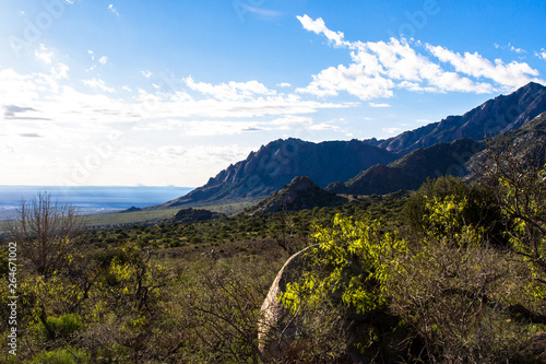 Dawn light at Organ Mountains-Desert Peaks National Monument in New Mexico Tablou Canvas