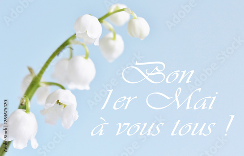 Photo sur Aluminium Muguet de mai postcard on May 1 in France. Lily of the valley on a blue background. holiday lily of the valley - the French tradition. the inscription in French
