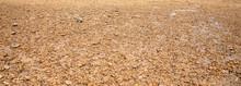 Coast, River Bank,Sandy Texture,Large Sand With Small Stones, Bright Sunlight.  Summer, Beach.Morning Sunrise At The Pier Railay Bay, Railay Beach Railay Amphur Muang, Krabi Thailand