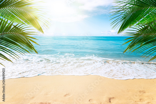 Poster Palmier Sunny tropical beach with palm trees