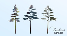 Set Of Watercolor Pine Trees ....