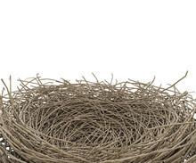 Nest Isolated On White