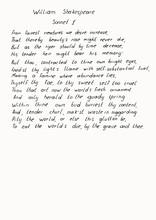 Handwritten Text. Vector Illustration.