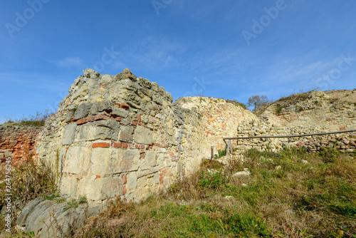 Fototapeta Zamek w Iłży obraz