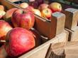 canvas print picture - Äpfel vom Markt - ökologische Verpackung