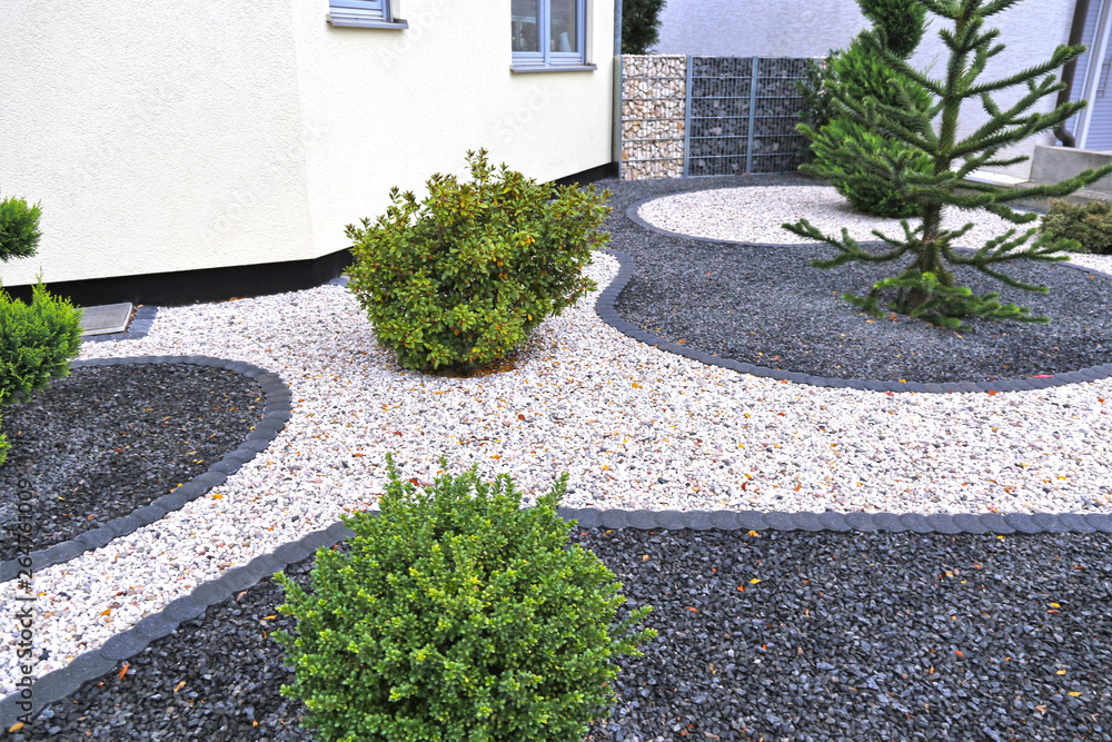 Fototapety, obrazy: Moderner Vorgarten mit Ziersplitt