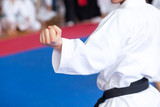 Karate practitioner body position during training. Martial arts.