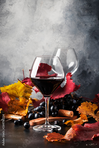 Acrylic Prints Wine Red wine in wine glass, autumn still life with red and yellow leaves, wine tasting, copy space, selective focus