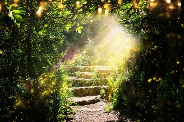 Drogi i kamienne schody w magicznym i tajemniczym ciemnym lesie z mistycznym światłem słonecznym i świetlikiem. Koncepcja bajki