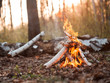 canvas print picture - Bonfire in forest at sunset