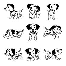 Vector Cartoon Character Dalmatian Dog Poses For Design.