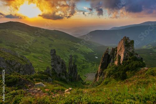 Poster de jardin Parc Naturel Landscape with the Ukrainian Carpathian Mountains in the summer warm season