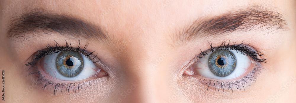 Fototapety, obrazy: Beautiful eyes, close up