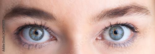 Canvastavla  Beautiful eyes, close up