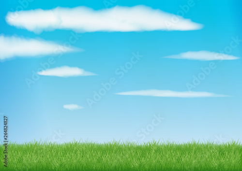 green field background with realistic grass. blue sky with clouds in the sun