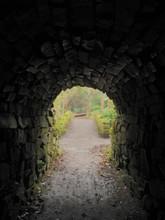 Dark Tunnel In Woods